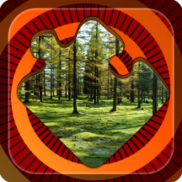 Magic Puzzles: Peaceful Forest