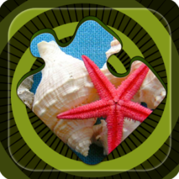 Magic Puzzles: Sea Stars