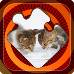 Magic Puzzles: Lovely Kitties
