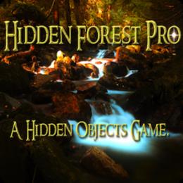 Hidden Forest Pro : A Hidden Objects Game.