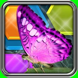 HexLogic - Butterflies