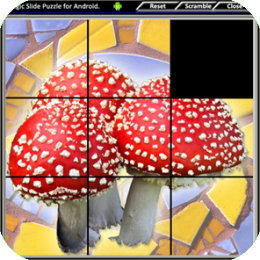 Magic Slide Puzzle - Mushrooms 1