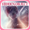Hidden Object - Dreaming with Fairies