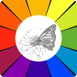 Sketch Coloring Book: Butterflies
