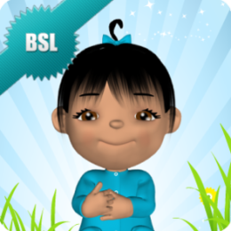 Baby Sign and Learn (BSL Edition)