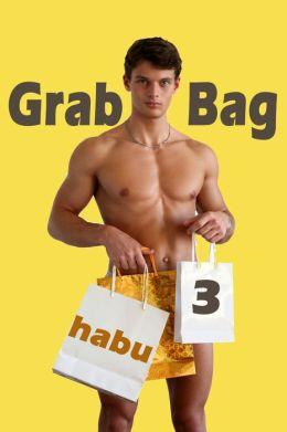 Grab Bag 3 (A Gay Erotica Anthology)