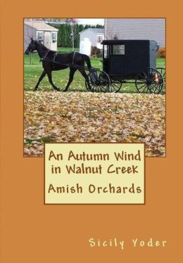 An Autumn Wind in Walnut Creek (Amish Christianity Book)