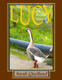Lucy the Harbor Goose