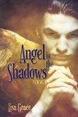 Angel in the Shadows, Book 1 by Lisa Grace (Angel Series)