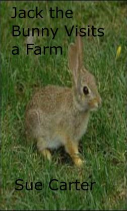 Jack the Bunny Visits a Farm