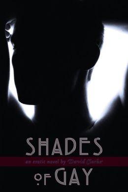 Shades of Gay: An Erotic Novel