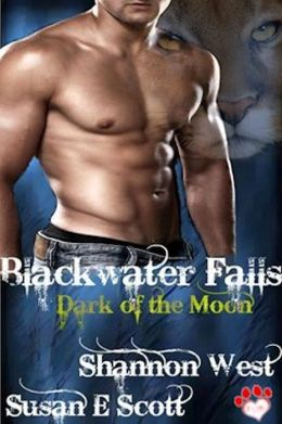 Blackwater Falls: Dark of the Moon