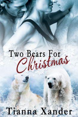 Two Bears for Christmas