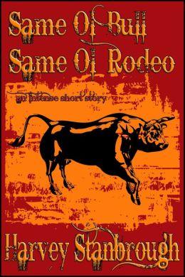 Same Ol' Bull Same Ol' Rodeo