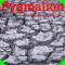 AudioBook - Pygmalion ( Audio Book by George Bernard Shaw)