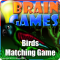 Brain Games - Birds Matching Game