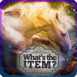 What's the Item? - Horse Whisperer