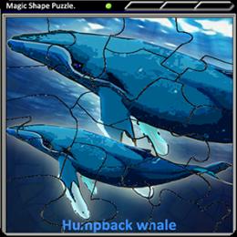 Magic Shape Puzzle 3