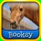 Ponies!: Booksy Level 1 Reader