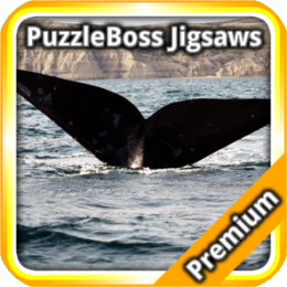Whale Jigsaw Puzzles