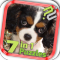 Puzzle Pack: Cute Puppies