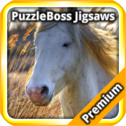 Horse Jigsaw Puzzles