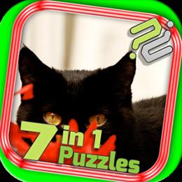 Puzzle Pack: Black Cat Puzzles