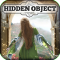 Hidden Object - Daydreams