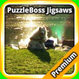 Park Jigsaw Puzzles