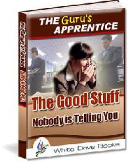 The Guru's Apprentice: The Good Stuff Nobody is Telling You