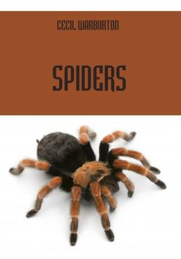 Spiders (Illustrated)