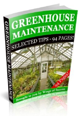 Greenhouse Maintenance