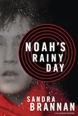 Noah's Rainy Day