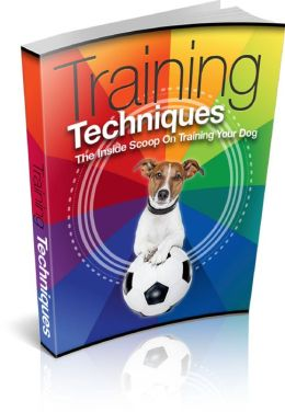 Dog Training Techniques Be A Success At Training Your Pet