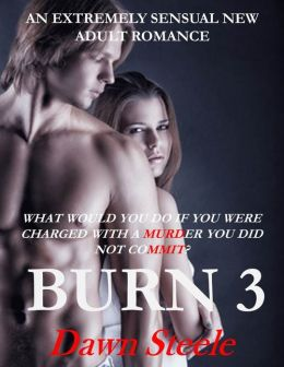 Burn 3 (New Adult, Sensual Erotic Romance, BDSM Mystery, MF, Gay)