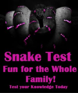 Snake Test Fun for the Whole Family!