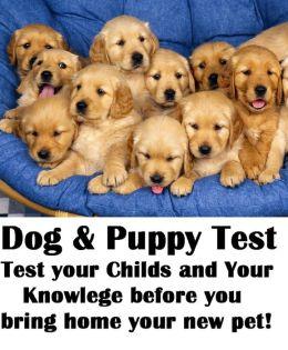 Animals: Dog Test
