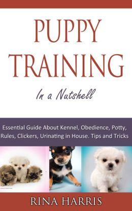 Puppy Training In A Nutshell