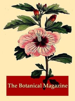 The Botanical Magazine, Volumes VII-VIII