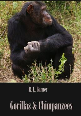 Gorillas & Chimpanzees (Illustrated)