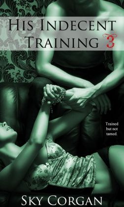 His Indecent Training 3 (BDSM Erotic Romance)