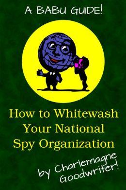 How to Whitewash Your National Spy Organization