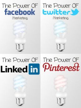 The Power of Social Media: Use Facebook Advertising, Twitter Marketing, Pinterest and LinkedIn to expand your business and earn more profits!
