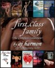 Book Cover Image. Title: First Class Family, Author: AJ Harmon