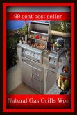 Book Cover Image. Title: Barbecue:  99 Cent Best Seller Natural Gas Grills Wps, (barbecue, roast, sear, burn, cook, rotisserie, charcoal-broil, cook over an open , pit, picnic), Author: Resounding Wind Publishing