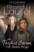 Book Cover Image. Title: The Perfect Storm, Author: Rhonda Laurel