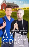 Book Cover Image. Title: Lancaster County Amish Grace, Author: Rebecca Price