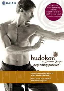 Budokon by Cameron Shayne: Beginning Practice