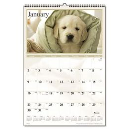 At-A-Glance DMW16728 Full-Color Puppies Photographic Monthly Wall Calendar, 15-1/2 x 22-3/4