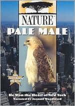 Nature: Pale Male